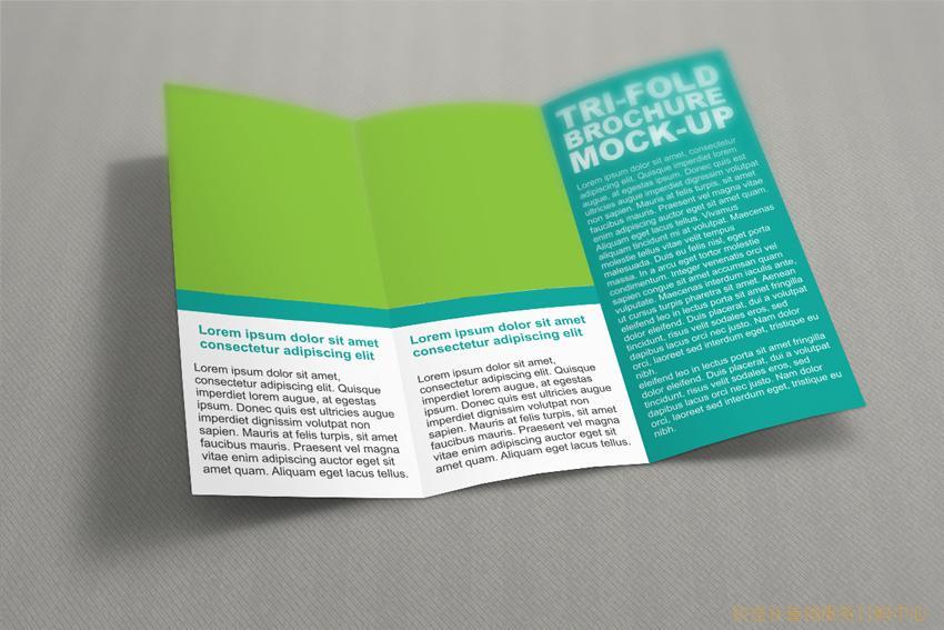 三折页A4(展开尺寸210*285mm)铜版纸